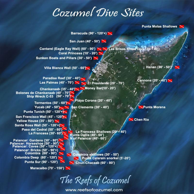 Cozumel diving 101 liquid adventures - Cozumel dive sites ...